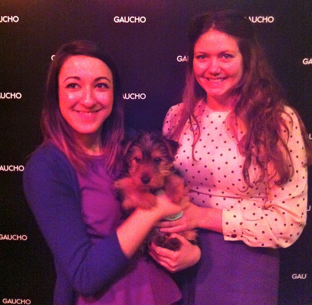 The lovely Hannah & Carly from Battersea Dogs & Cats Home with the man of the moment - George