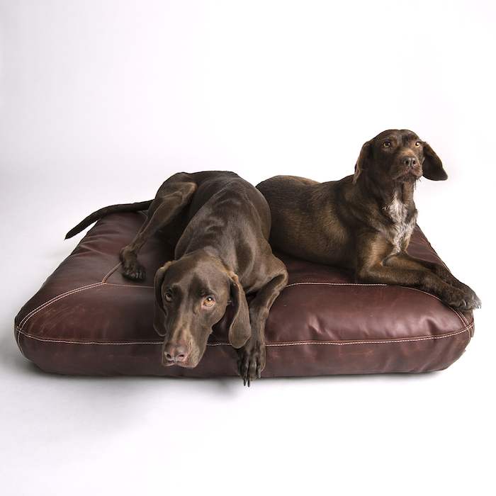 luxury dog beds collars and leads by cloud 7. Black Bedroom Furniture Sets. Home Design Ideas