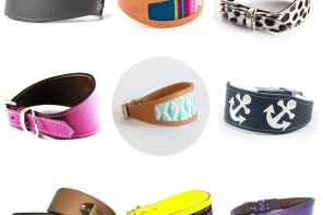 TRENDS: 9 Modern Designer Collars for Sighthounds