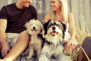 NEWS: Tindog – Find Puppy Love with Tinder for Dog Owners