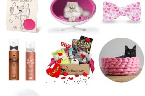 GIFT GUIDE: 9 Adorable Valentine's Day Gift Ideas for Pets
