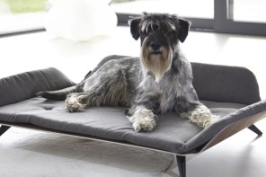 TRENDS: 10 of the Most Amazing Luxury Dog Beds