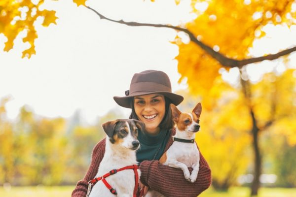 dog friendly things to do in autumn