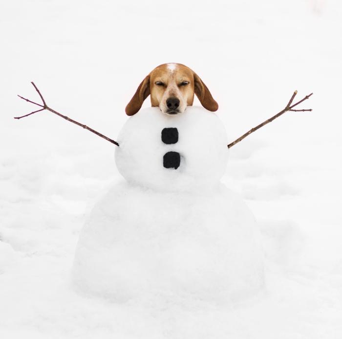 Maddie on things snow