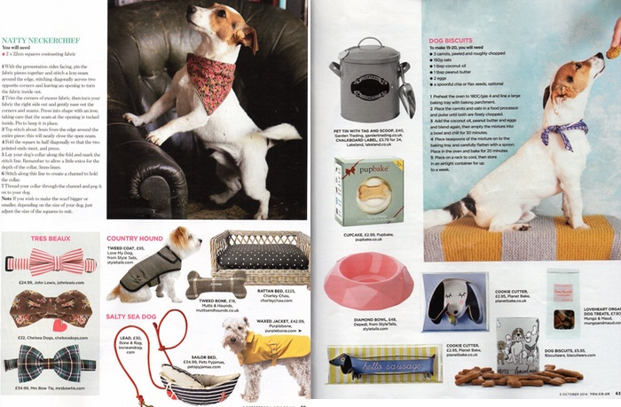 dog special YOU magazine October 2014