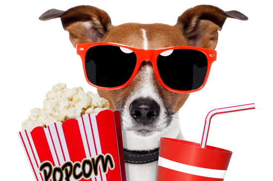 billy-margot-popcorn-for-dogs
