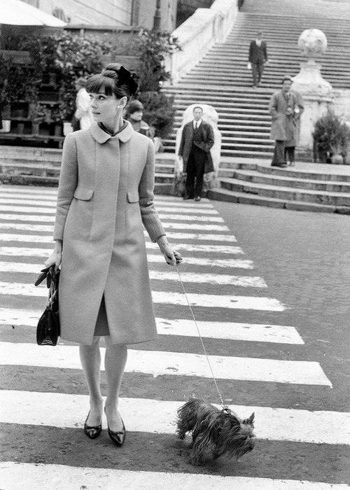 Dog lover Audrey Hepburn with her Yokrie Mr Famous