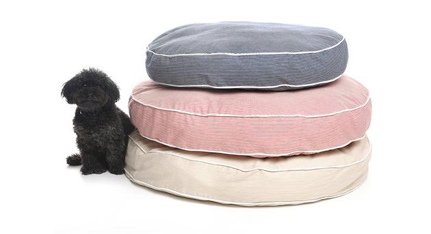waggo dog bed