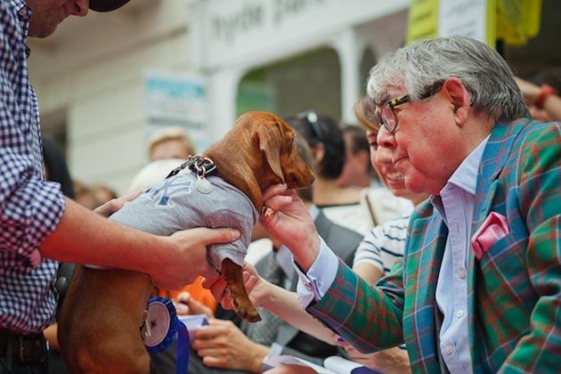 Ronnie Corbett at the Hyde Park Vet Dog Show