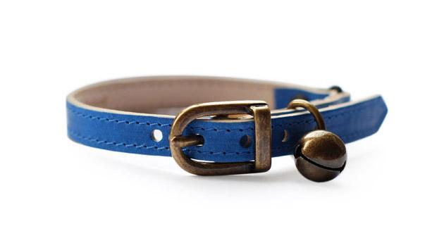 Blue leather cat collar