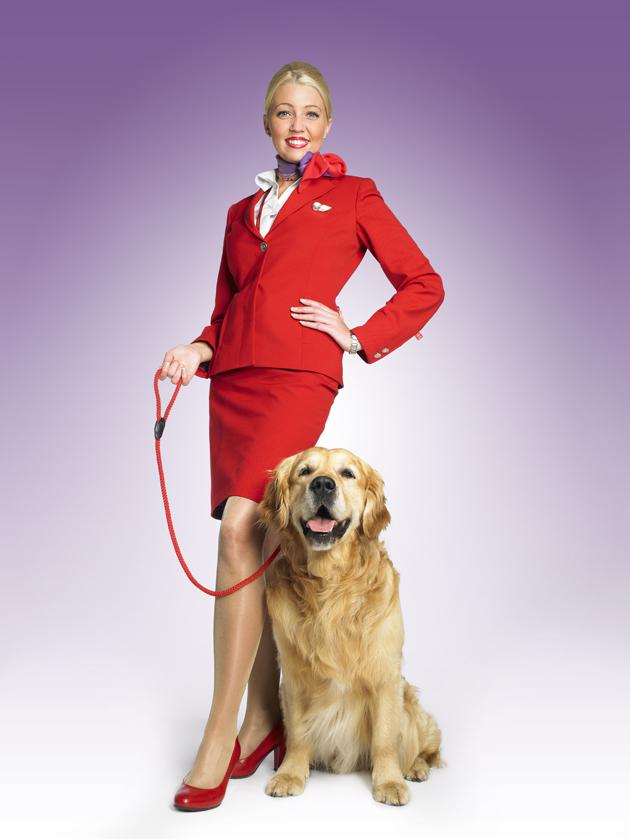 Virgin Atlantic pet flying paws