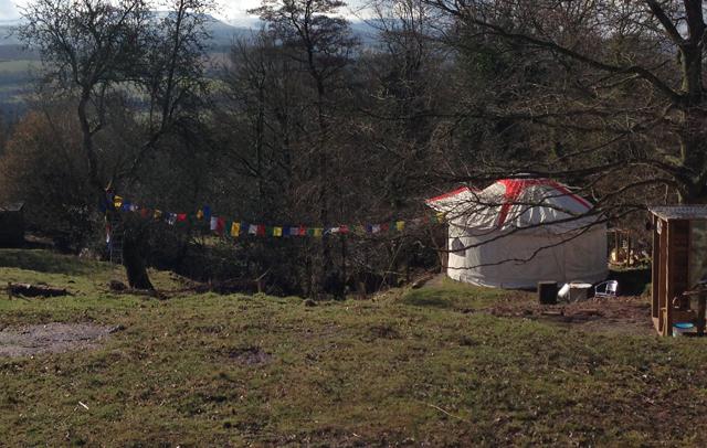 Fresh Spring Yurt Glamping pet friendly