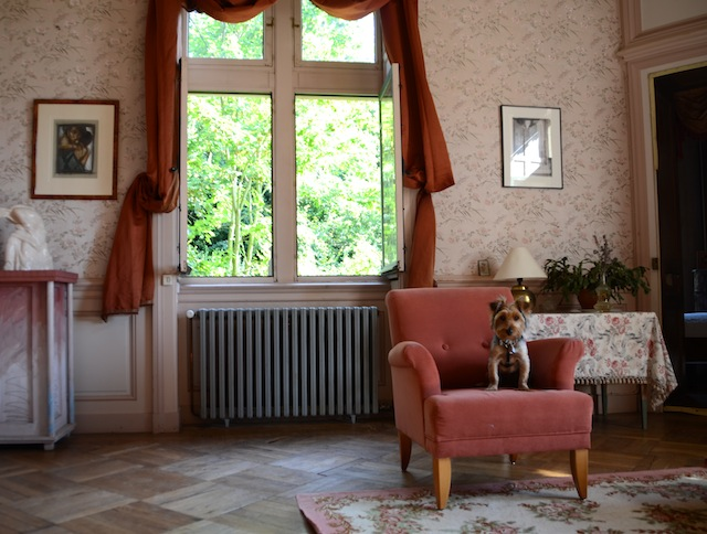 Pet Friendly Chateau de Burnand, Burgundy, france, holiday