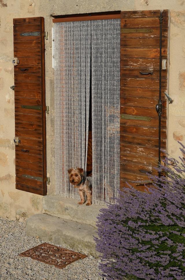 Le Clair G Door