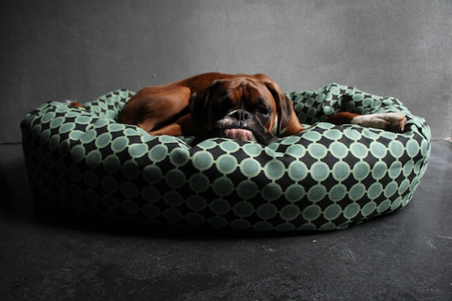 Donut Bolster Dog Bed - Green Circles by Bone & Rag, From £110.00