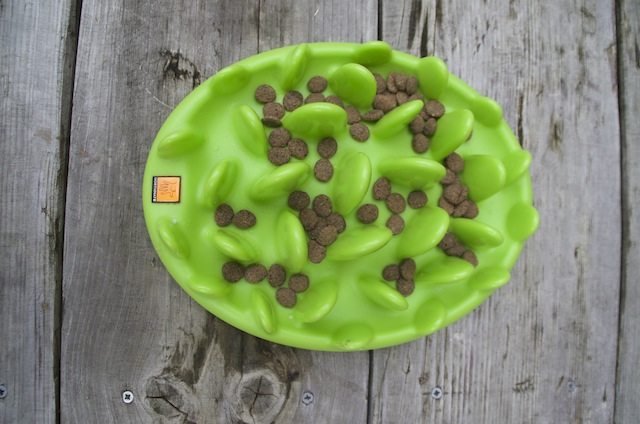 Green Mini Slow Dog Feeder by Northmate