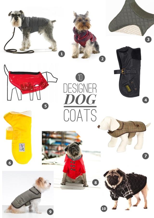 10 of the best designer dog coats