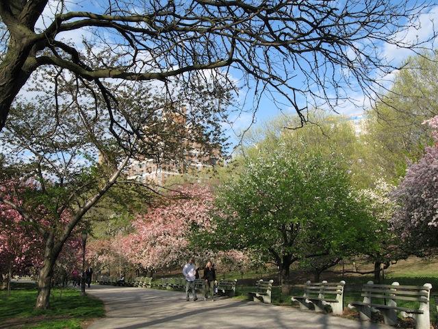 riverside park dog friendly new york