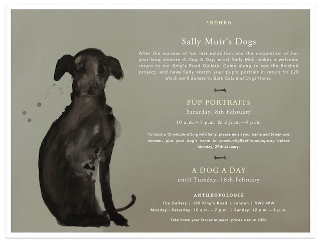 sally muir a dog a day anthropologie event