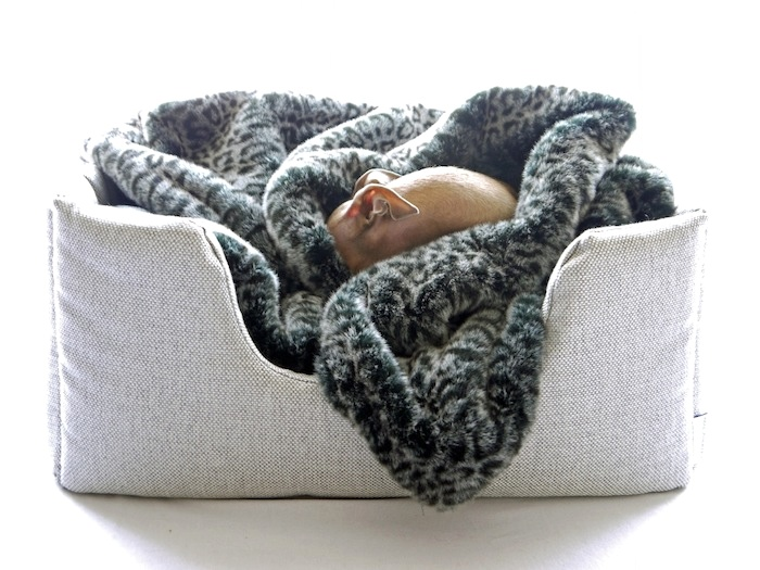 charley chau luxury dog bed and dog blanket