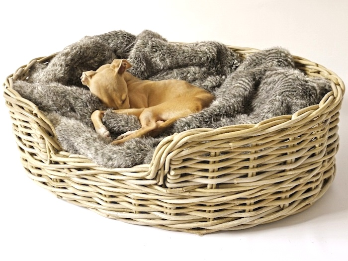 What S Hot Designer Dog Beds Amp Blankets By Charley Chau