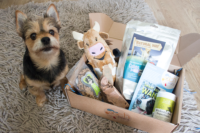 Pooch Pack Subscription dog box