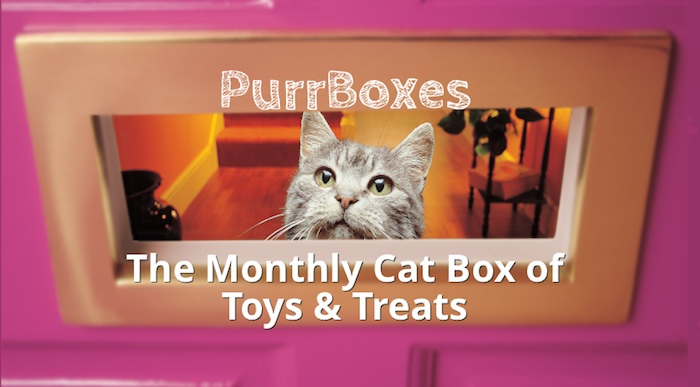 purrboxes cat subscription gift box