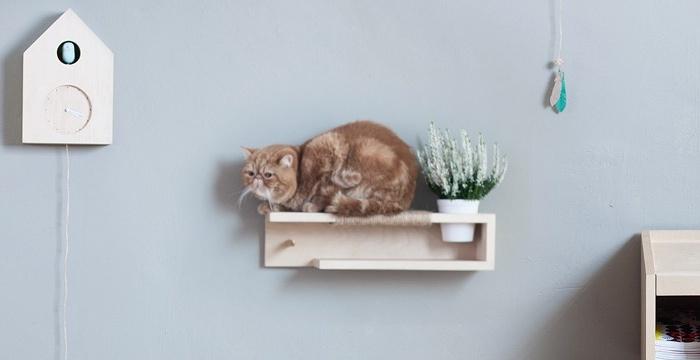 cat perch cat shelf the 9 life