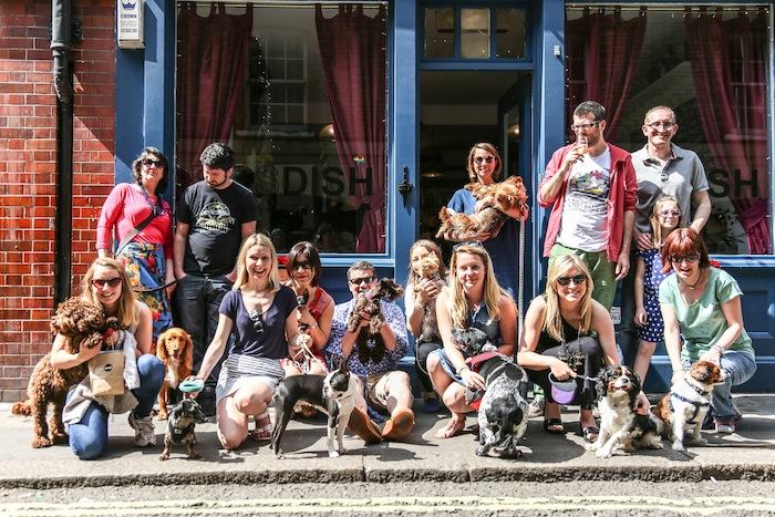 Pipsdish styletails dog lovers sunday lunch - dog friendly restaurant