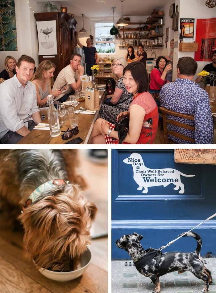 pipsdish dog friendly restaurant