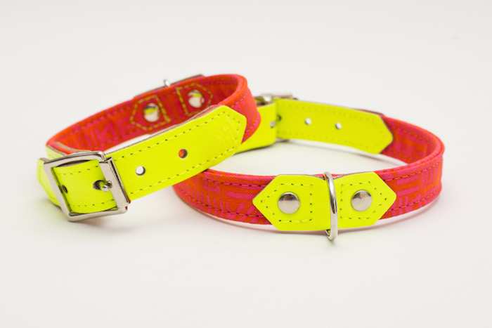 modern dog collar collection by kate moross for hiro and wolf