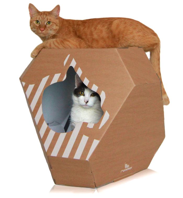 MIA cardboard cat house by my kotty
