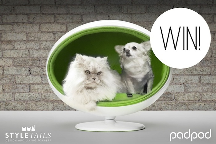 Win a Padpod by Bark and Miao