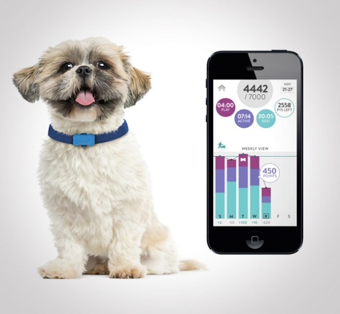 Fitbark dog monitor wearable technology