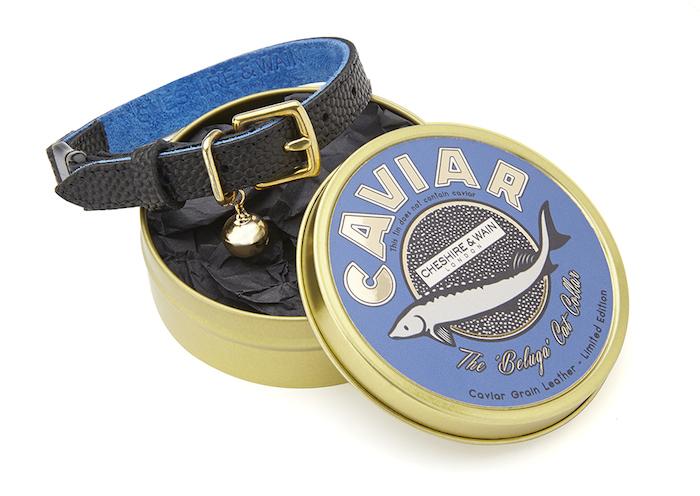Beluga Caviar Leather Cat Collar Cheshire & Wain