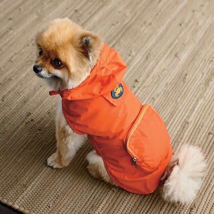 Fabdog dog raincoat