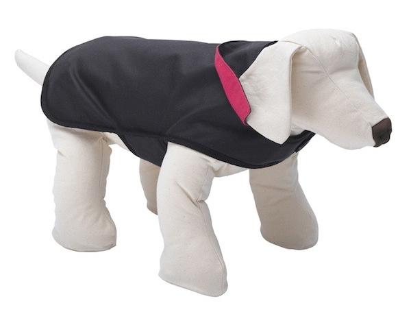 Filey dog raincoat lovemydog