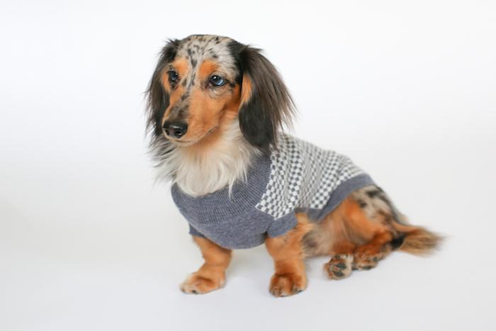 Tulla Cashmere Dog Jumper Ruby Rufus