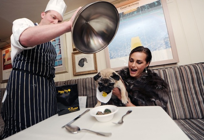 Yasmin Le Bon & her pug at George dog friendly restaurant (photo: Dave Bennett)