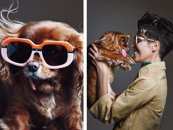 Toast the dog for Karen Walker Sunglasses