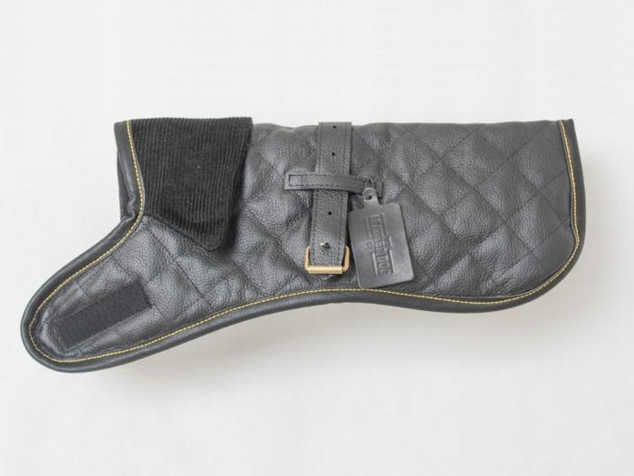black dog coat square 700