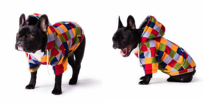 Times Square Dog Hoodie by Bonnie & Grover