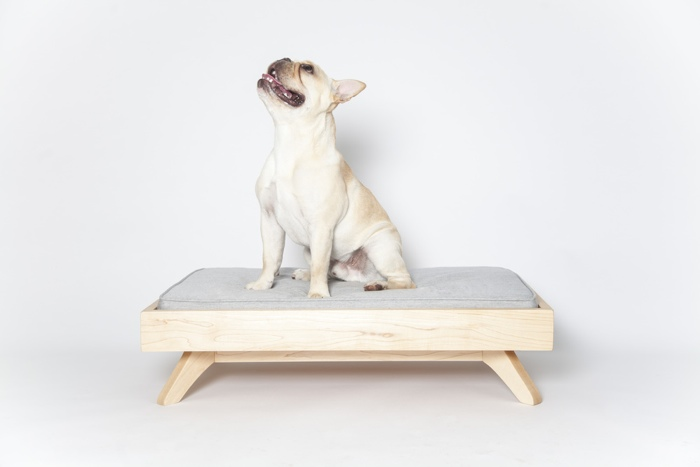 Pup and Kit Joey Low Back Dog Bed