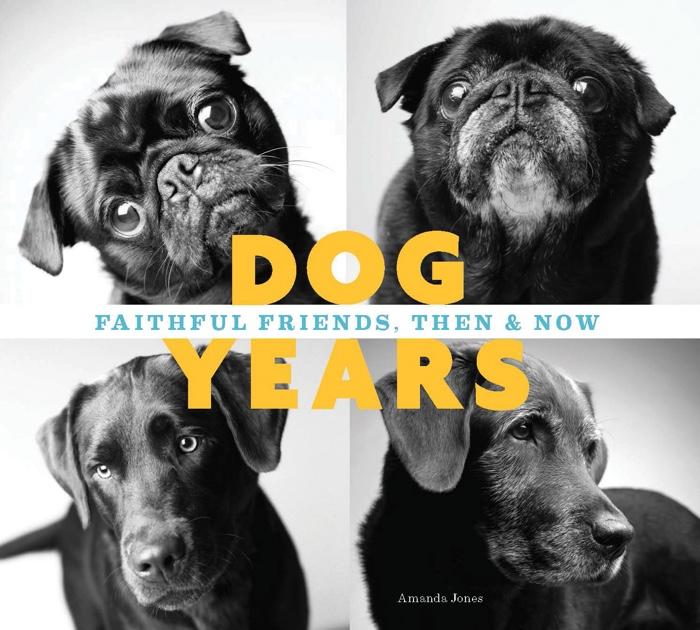 Dog Years by Amanda Jones, published by Chronicle Books