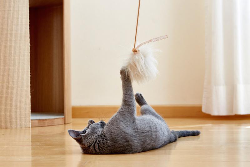 MiaCara_Topo_Cat_Toy