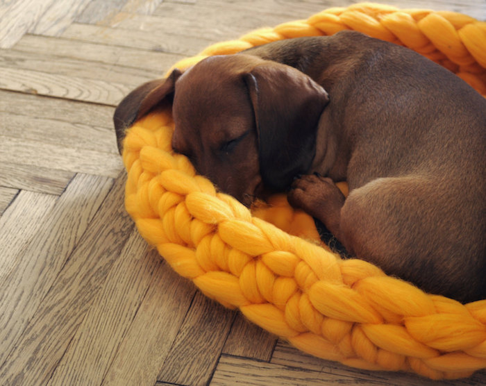 knitted wool dog bed by ohhio