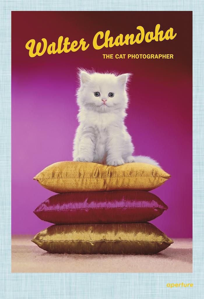 walter chandoha cat photographer book