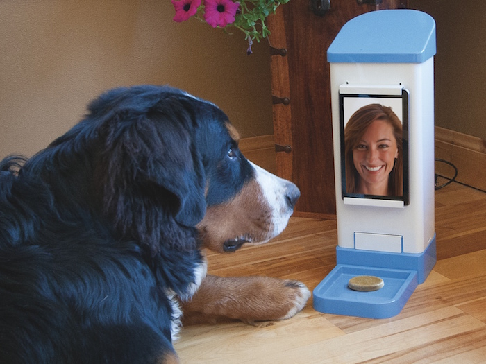Dog Treat Dispenser >> TRENDS: 7 Smart Interactive Pet Feeders for When You're ...