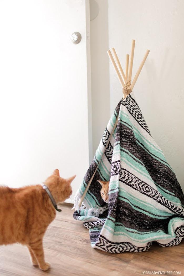 DIY cat teepee local adventurer