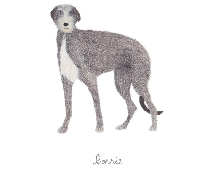 Custom dog portrait by Louise Jewell